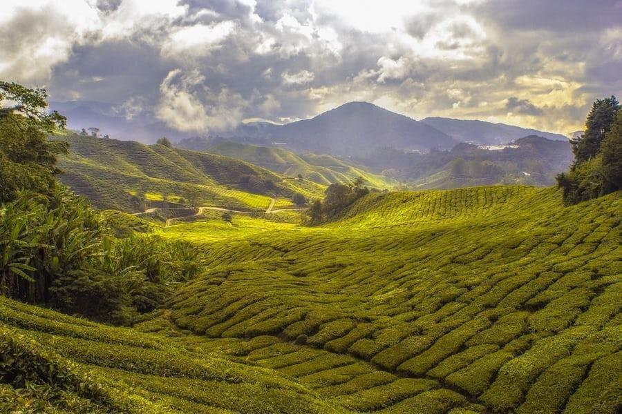 دیدنی ترین شهرهای آسیایی برای سفر کدام ها هستند؟