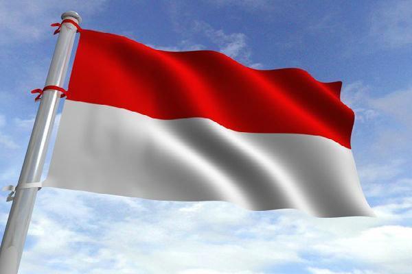 اندونزی خبرنگار آمریکایی بازداشتی را اخراج کرد