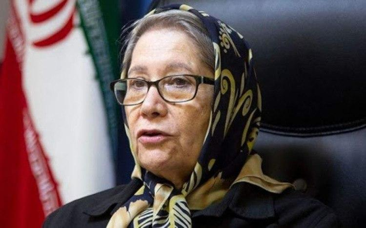 مینو محرز: رئیس جمهور دستور تعطیلی تهران را صادر کرده اما...