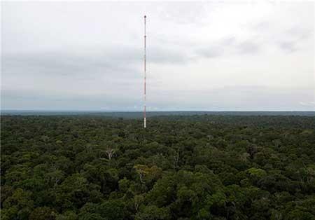 برج هواشناسی در بزرگ ترین جنگل جهان (آمازون) ، عکس