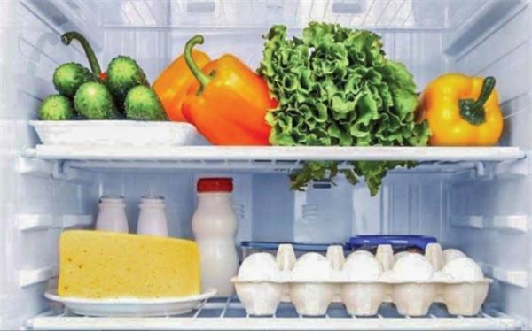 چگونه از فساد مواد غذایی هنگام قطع برق جلوگیری کنیم؟