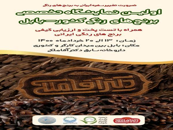 برگزاری اولین نمایشگاه تخصصی برنج های رنگی کشور در بابل