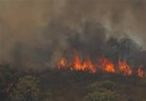 آتش سوزی گسترده در جنوب اسپانیا؛ مرگ یک آتش نشان در عملیات اطفاء حریق