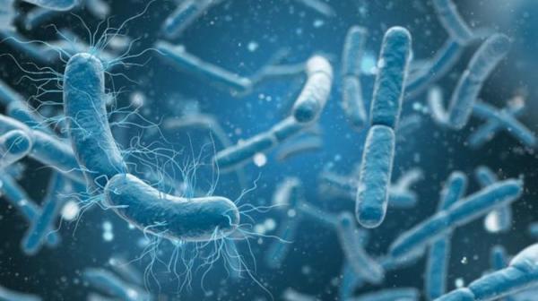 یک نگرانی نوظهور؛ باکتری های مقاوم در برابر الکل